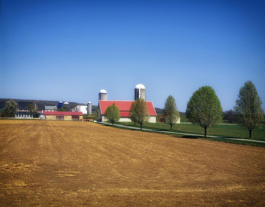 Read more about the article Jak wygląda budowa stalowej hali rolniczej?