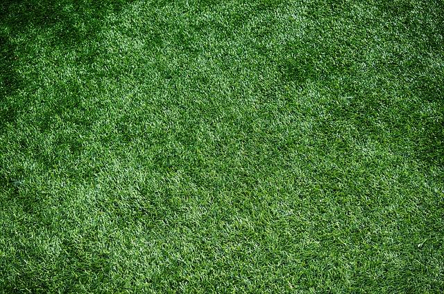 Zalety ułożenia sztucznej trawy
